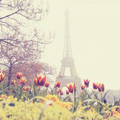 eyfelevabashnya-cvety-pariz
