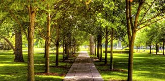 Парки и сады в Париже!