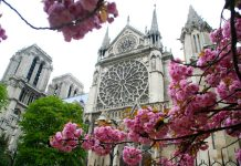 april_in_paris_by_bookmanjr_3-d3dp51e