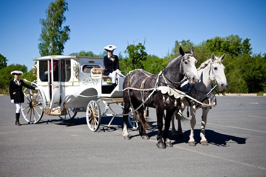 Экскурсия на карете