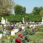 Парижский Сад Тюильри