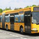 Автобус в Диснейленд из Парижа