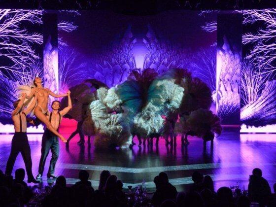 Кабаре Лидо в Париже: шоу, билеты, адрес + фото